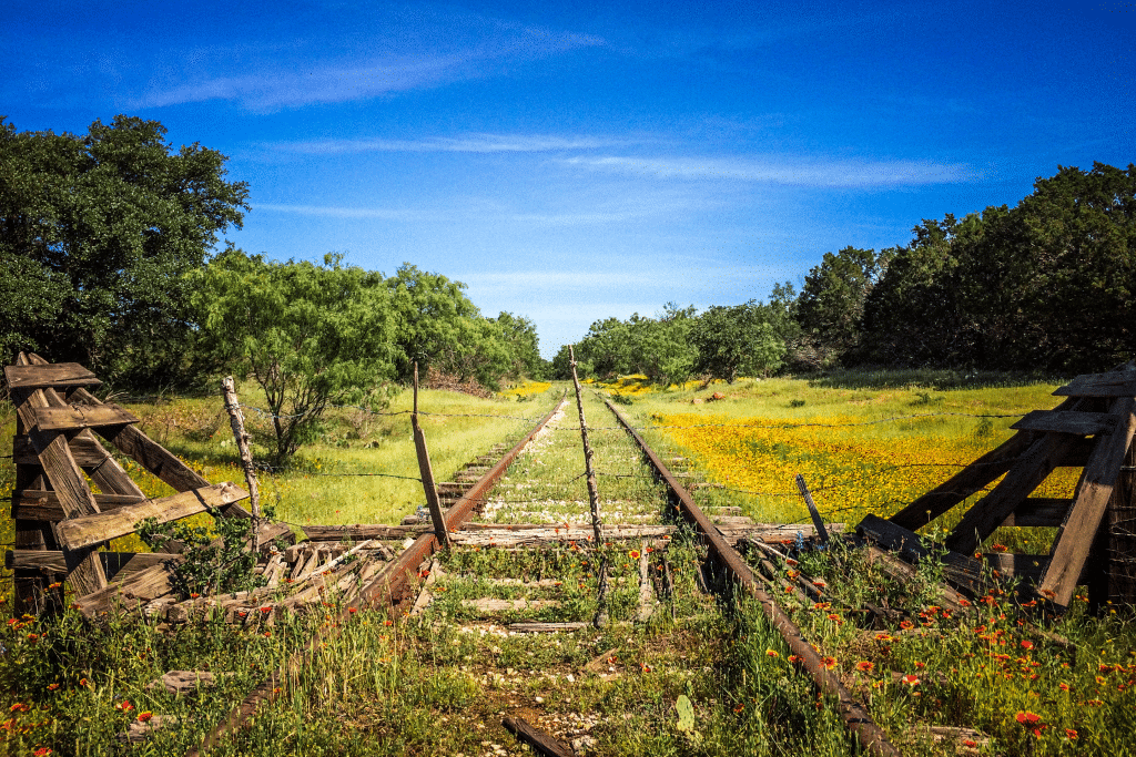 Indian blankets and abandoned railroad tracks near Kingsland, Texas